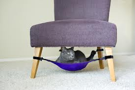 Photo of a cat crib.