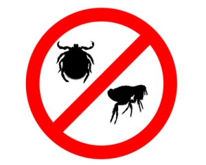 Prohibition sign for fleas and ticks on