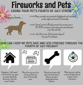 Tips for the 4th of July