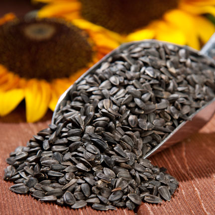 Black oil sunflower prices are going to $39.50 a bag ASAP.